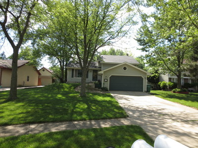 Homer Glen Single Family Home Contingent: 14512 South Birchdale Drive
