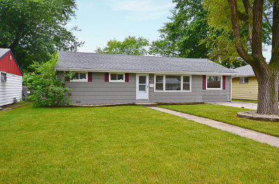 Thornton Single Family Home Contingent: 406 Blackstone Street