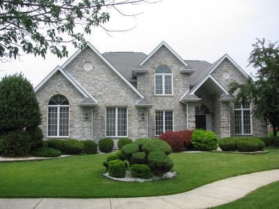 Matteson Single Family Home For Sale: 4532 Columbine Lane