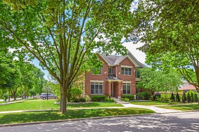 La Grange Single Family Home For Sale: 1000 South Madison Avenue