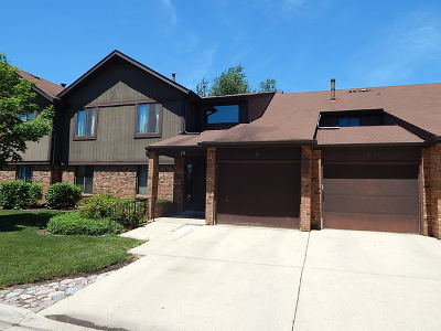 Elgin Condo/Townhouse Re-activated: 19 Creekside Circle #C
