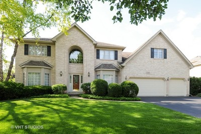 Naperville Single Family Home For Sale: 1336 Oakton Lane