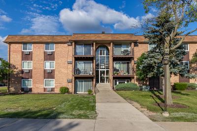 Hoffman Estates Condo/Townhouse For Sale: 1085 Higgins Quarters Drive #3-301