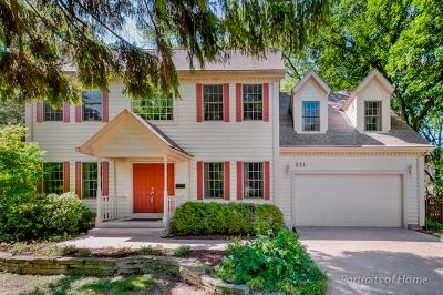 Glen Ellyn Single Family Home For Sale: 211 Hill Avenue