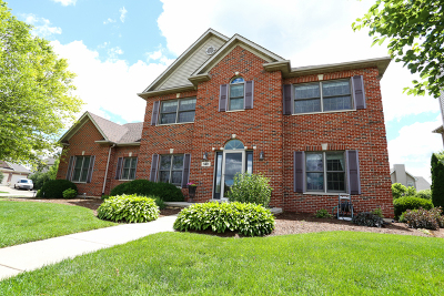 Elburn Single Family Home For Sale: 1401 Anderson Road