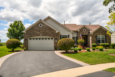 Huntley Single Family Home Contingent: 12223 Spring Creek Drive