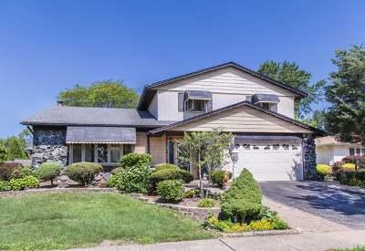 Oak Forest Single Family Home For Sale: 15236 Linden Drive