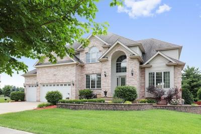 Breckenridge Estates Single Family Home For Sale: 816 Pueblo Court