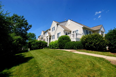 Cary Condo/Townhouse For Sale: 578 Cary Woods Circle