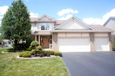 New Lenox Single Family Home For Sale: 703 Turtledove Lane