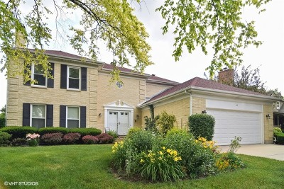 Terramere Single Family Home For Sale: 212 West Plum Grove Circle