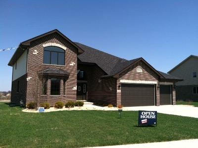 Mokena Single Family Home For Sale: 310 Whisper Creek Way