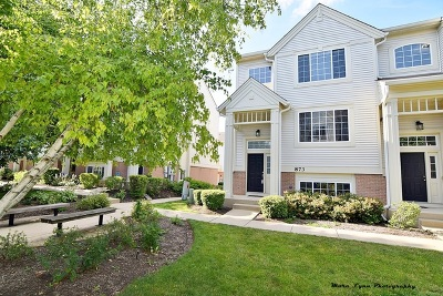 St. Charles Condo/Townhouse For Sale: 873 Pheasant Trail #873