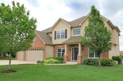 North Aurora Single Family Home Contingent: 2256 Schrader Lane