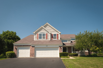 Schaumburg Single Family Home For Sale: 500 Cherry Hill Court