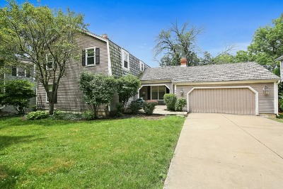 Hinsdale Single Family Home For Sale: 554 North Lincoln Street