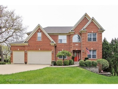 Glen Ellyn Single Family Home For Sale: 2s395 Golfview Drive