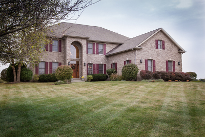 Elgin Single Family Home For Sale: 11n480 Hunter Trail
