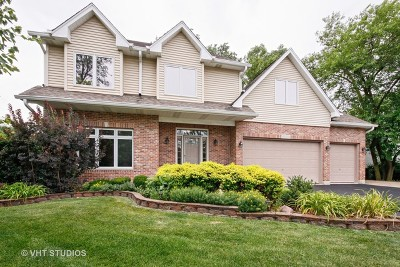 Downers Grove Single Family Home For Sale: 6050 Boundary Road
