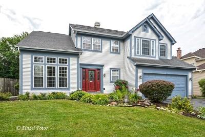 Bartlett Single Family Home Contingent: 223 Gatewood Lane
