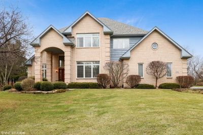 Barrington Single Family Home For Sale: 220 Carriage Trail