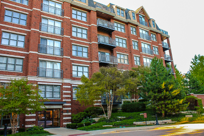 Wheaton Condo/Townhouse Contingent: 255 East Liberty Drive #207-2