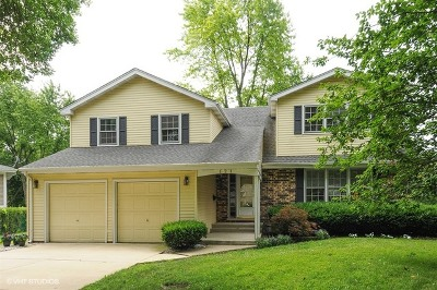 Maplebrook Single Family Home For Sale: 121 Tanager Court