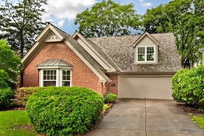 Glen Ellyn Single Family Home For Sale: 190 Brandon Avenue