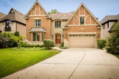 Elmhurst Single Family Home For Sale: 106 East Oneida Avenue