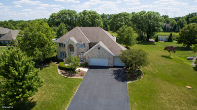 Homer Glen Single Family Home For Sale: 13101 Crystal Lake Court