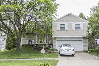 Bartlett Single Family Home Contingent: 793 West Appletree Lane
