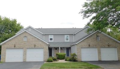 Bartlett Condo/Townhouse For Sale: 498 Nicole Drive #B