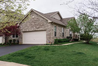 Elgin Condo/Townhouse For Sale: 969 Oak Ridge Boulevard