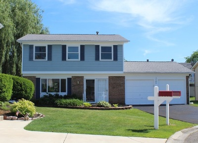 Hoffman Estates Single Family Home For Sale: 1589 East Bayside Court
