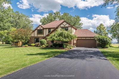 Elburn Single Family Home For Sale: 43w647 Hawkeye Drive