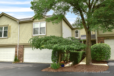 Naperville Condo/Townhouse For Sale: 478 River Front Circle