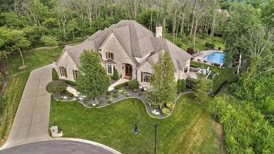 Homer Glen Single Family Home For Sale: 16371 Lakewood Path