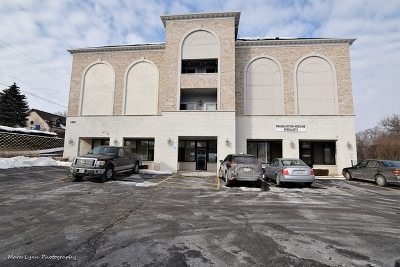 Elgin Commercial For Sale: 1990 Larkin Avenue