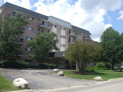 Wheaton Condo/Townhouse For Sale: 1000 South Lorraine Road South #103