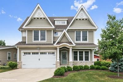 La Grange Single Family Home Contingent: 912 South Madison Avenue