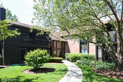 Crystal Lake Condo/Townhouse Contingent: 720 Saint Andrews Lane #32