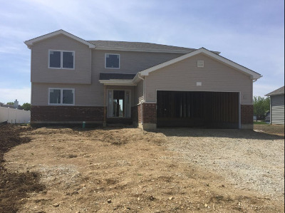 Oswego Single Family Home For Sale: 912 Bison Court