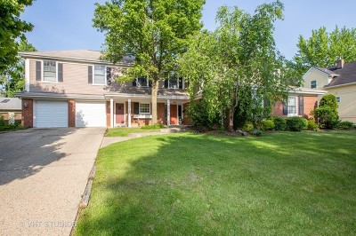 Barrington Single Family Home For Sale: 615 South Cook Street