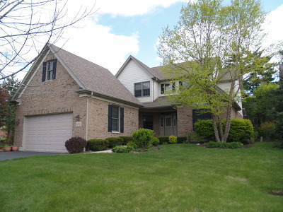 Orland Park Single Family Home For Sale: 14305 Vintage Court