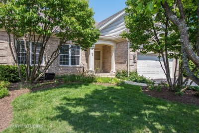 Lake In The Hills Condo/Townhouse For Sale: 3881 Willow View Drive