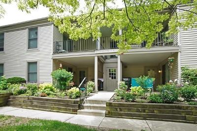 Hoffman Estates Condo/Townhouse For Sale: 1768 Sessions Walk #E