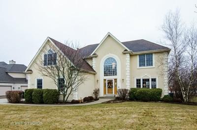 Crystal Lake Single Family Home For Sale: 9465 Nicklaus Lane
