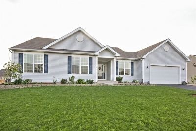 Hampshire Single Family Home For Sale: 728 Marcello Drive