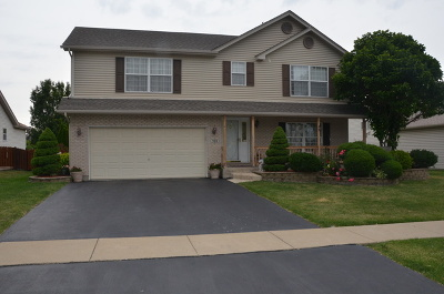 Romeoville Single Family Home For Sale: 359 Sunset Pointe