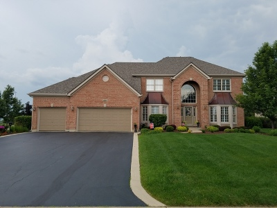 Algonquin Single Family Home For Sale: 660 Clover Drive